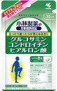 グルコサミン コンドロイチン  ヒアルロン酸 240粒 約30日分 小林製薬