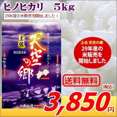 ●29年産新米●土佐 天空 の 郷 ヒノヒカリ 5Kg 特別栽培米 お米 5kg送料無料