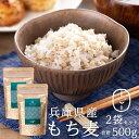 もち麦 国産(兵庫県産100%) 500g(250g×2袋) 【もち麦 送料無料 】 もち麦 国産 送料無料 もっちもちで美味しい! 低G…
