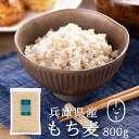 もち麦 国産 (兵庫県産100%) 800g 【もち麦 送料無料 】もち麦 もちむぎ 国産 送料無料 もっちもちで美味しい! 低GI…