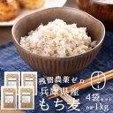 もち麦 国産(兵庫県産100%) 1kg(250g×4袋) 【もち麦 送料無料 】もち麦 国産 送料無料 もっちもちで美味しい! 低GI…