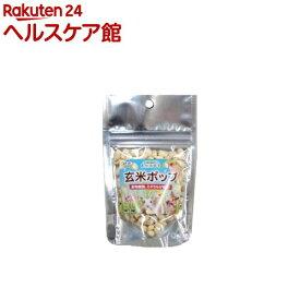 自然派宣言 玄米ポップ(4g)【more99】【自然派宣言】
