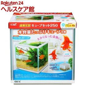 ジェックス 金魚元気キューブセット 250(1セット)【GEX(ジェックス)】