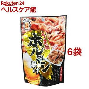 うま塩ホルモン揚げ(20g*6コセット)【slide_c5】