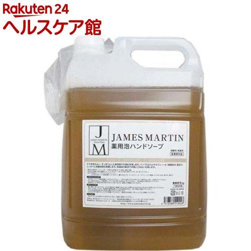 ジェームズマーティン フレッシュサニタイザー 薬用泡ハンドソープ 詰め替え用(5kg)【ichino11】【ジェームズマーティン】【送料無料】