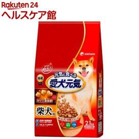 愛犬元気 柴犬用 ビーフ・緑黄色野菜・小魚入り(2.1kg)【愛犬元気】[ドッグフード]