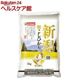 令和元年度産 新潟県産コシヒカリ(国産)(5kg)【spts4】【slide_g1】【おくさま印】[米]