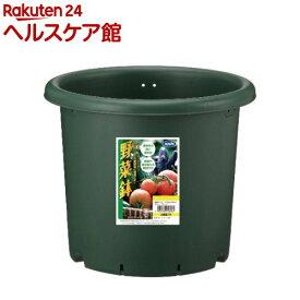 野菜鉢 30型 グリーン(1コ入)