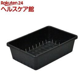 育苗コンテナー 6型 ブラック(1コ入)【more99】