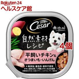 シーザー 自然素材レシピ 平飼いチキン&さつまいも・いんげん(85g*4個セット)【シーザー(ドッグフード)(Cesar)】