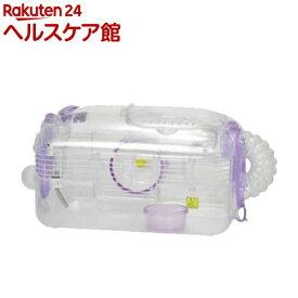 ルックルック フォーチュン D C112 バイオレット(1コ入)【WILD(ワイルド)】