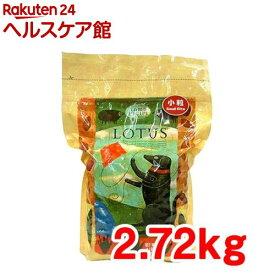 ロータス アダルト ラムレシピ 小粒(2.72kg)【ロータス】