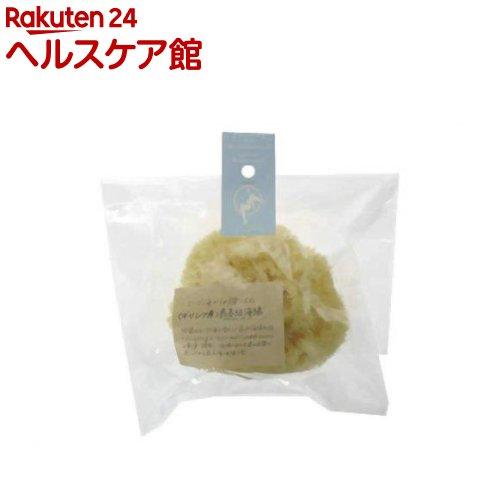 ナチュラルピュアスポンジ ギリシャ産海綿 M(1コ入)【ラッシュ】【送料無料】