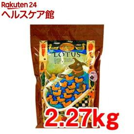 ロータス グレインフリー ダックレシピ 小粒(2.27kg)【ロータス】
