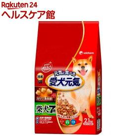 愛犬元気 柴犬用 7歳以上用 ビーフ・緑黄色野菜・小魚入り(2.1kg)【愛犬元気】[ドッグフード]