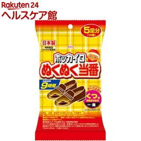 ホッカイロ ぬくぬく当番 くつ用(5足分)【ホッカイロ ぬくぬく当番】