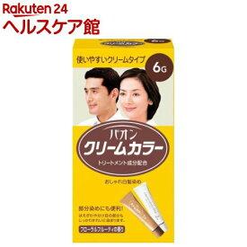 パオンクリームカラー 6G(1セット)【パオン】[白髪染め]