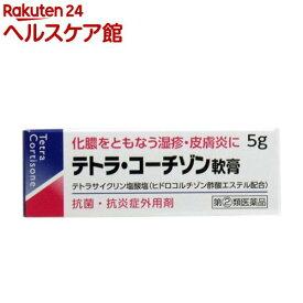 【第(2)類医薬品】テトラ・コーチゾン軟膏(5g)【伊丹製薬】