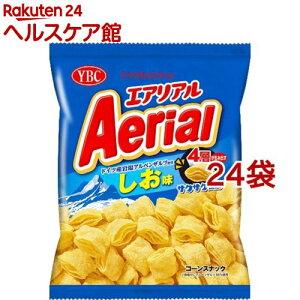 エアリアル ドイツ産岩塩アルペンザルツ使用 しお味(75g*24袋セット)