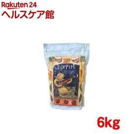 ロータス アダルト チキン レシピ 中粒(6kg)【ロータス】[ドッグフード]
