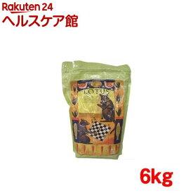 ロータス シニア チキン レシピ 中粒(6kg)【ロータス】[ドッグフード]