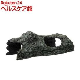トンネル流木 バーク L(1個)