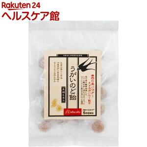 うがいのど飴 燕の巣パウダー&マヌカハニー配合(100g)
