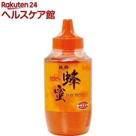 カンピー 純粋蜂蜜 ポリ(1kg)【Kanpy(カンピー)】