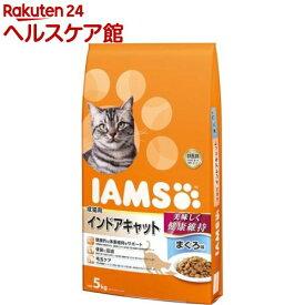 アイムス 成猫用 インドアキャット まぐろ味(5kg)【dalc_iams】【m3ad】【アイムス】[キャットフード]