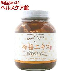 いんやん倶楽部 梅醤エキス 濃縮番茶&生姜入り(250g)【いんやん倶楽部】