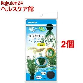 ニッソー メダカのたまご産み草ミニ(2個セット)【NISSO(ニッソー)】
