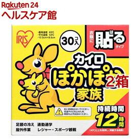 アイリスオーヤマ ぽかぽか家族 貼るレギュラー PKN-30HR(30コ入*2箱セット)【アイリスオーヤマ】