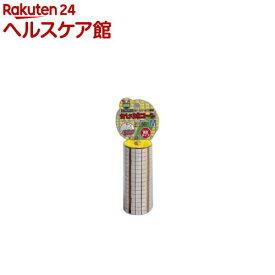 マルカン かじり木 コーン MR-144(Mサイズ)
