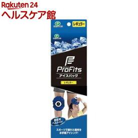 ピップスポーツ アイスバック レギュラー(直径約21cm・容量約1350ml)(1コ入)【ピップスポーツ】