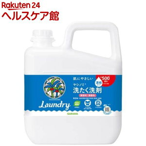 ヤシノミ洗たく洗剤 コンパクトタイプ つめかえ用(5kg)【spts5】【ヤシノミ洗剤】
