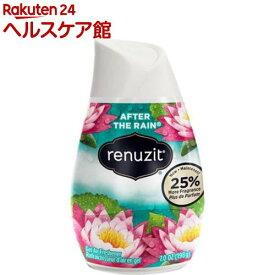 リナジット エアーフレッシュナー BOX アフターザレイン(12コ入)【リナジット(Renuzit)】