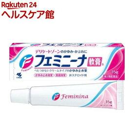 【第2類医薬品】小林製薬 フェミニーナ軟膏S(15g)【フェミニーナ】