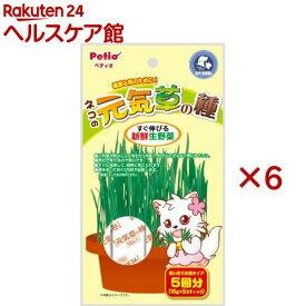 ペティオ ネコの元気草の種(15g*5包入*6コセット)【ペティオ(Petio)】