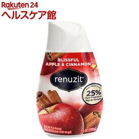 リナジット エアーフレッシュナー BOX アップルシナモン(12コ入)【リナジット(Renuzit)】