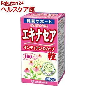 山本漢方 エキナセア粒 100%(280粒)【山本漢方】