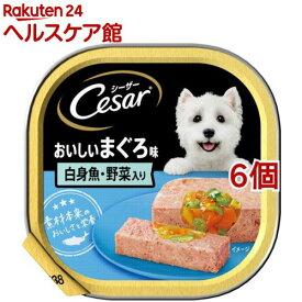 シーザー おいしいまぐろ 白身魚・野菜入り(100g*6個セット)【シーザー(ドッグフード)(Cesar)】[ドッグフード]