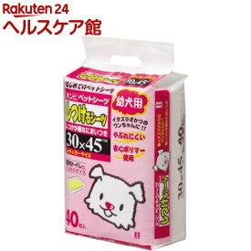 ボンビアルコン しつけるシーツ 幼犬用(40枚入)【more20】【しつけるシーツ】