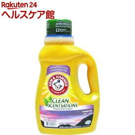 アーム&ハンマー 洗濯用洗剤 トワイライトスカイ アーカディア(1.84L)【アーム&ハンマー】