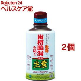 小林製薬 薬用 生葉液 歯槽膿漏を防ぐ ハーブミント味(330ml*2コセット)【生葉】