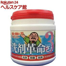 洗剤革命3(300g)