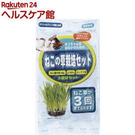 アラタ ねこの草栽培セット(3回分)