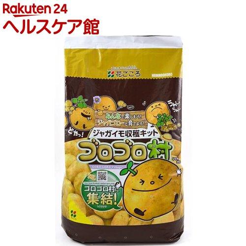 花ごころ ジャガイモ収穫キット ゴロゴロ村(1セット)