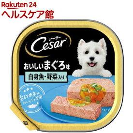 シーザー おいしいまぐろ 白身魚・野菜入り(100g)【シーザー(ドッグフード)(Cesar)】[ドッグフード]