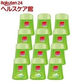 ミューズ ノータッチ泡ハンドソープ 詰替え ボトル グリーンティーの香り(250ml*12コセット)【ミューズ】