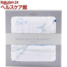 NEWCASTLE CLASSICS コットンブランケット Whale&Ocean Stripe(1枚)【ニューキャッスルクラシックス】